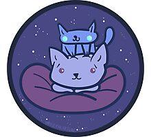 Beanbag Space Kitties Photographic Print