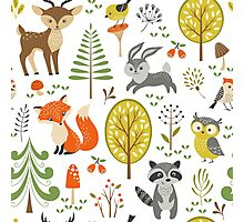 Cute Colorful Pastel Tones Stylized Forest & Animals Illustration  Photographic Print