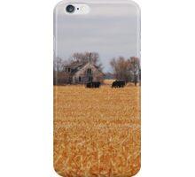 Cows In The Corn iPhone Case/Skin