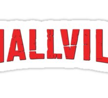 Smallville TV Show Logo Sticker
