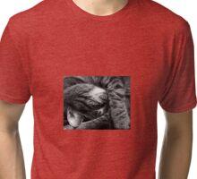 Cat Ball Tri-blend T-Shirt