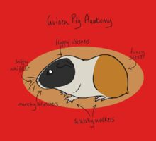 Guinea Pig Anatomy Kids Tee