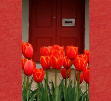 Tulips at My Door Tri-blend T-Shirt