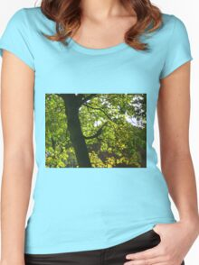 Tree Silhouette with Backlit Leaves Women's Fitted Scoop T-Shirt