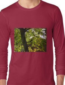 Tree Silhouette with Backlit Leaves Long Sleeve T-Shirt