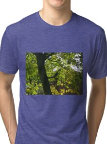 Tree Silhouette with Backlit Leaves Tri-blend T-Shirt
