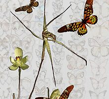 Butterflies & Orchids 1 by Leonie Mac Lean