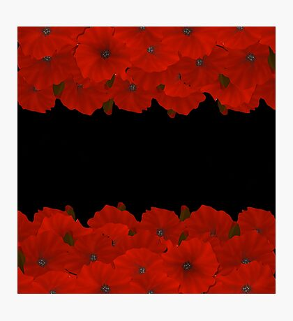Flower frame. Floral border. Bouquet of red poppy on black background. Photographic Print