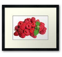 Raspberries & Mint Framed Print
