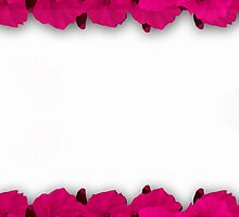 Flower frame. Floral border. Bouquet of pink poppy on white background. by fuzzyfox