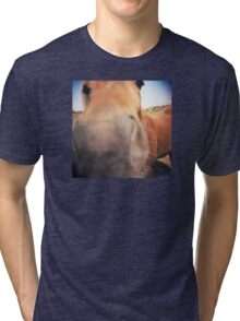 The Nosey Horse Tri-blend T-Shirt