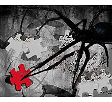 once there was this spider Photographic Print