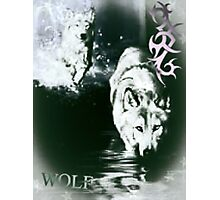 The Lone Wolf Photographic Print