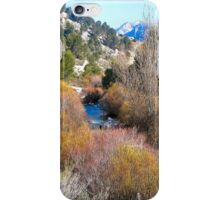 Spanish vista iPhone Case/Skin
