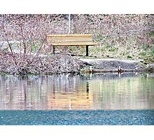Bench Marked Photographic Print