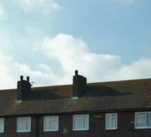 Rooftops Sticker