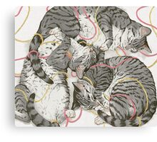 cats /rose and gold Canvas Print