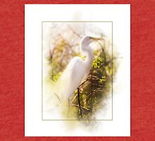 Great Egret Tri-blend T-Shirt