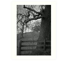Truncated ~ Gothic Black & White Tree Image, Tremeirchion, North Wales UK Art Print