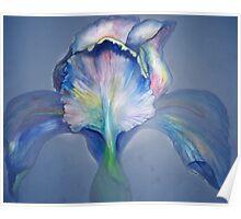 Blue Rainbow Iris II Poster
