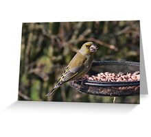 The seed cracker Greeting Card