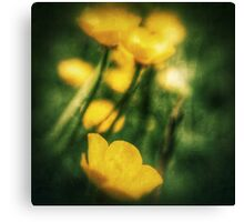 Through the Viewfinder Canvas Print