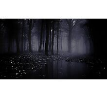 The Dark Forest 1 Photographic Print
