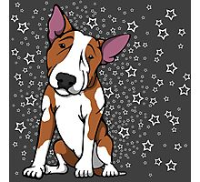 Starry English Bull Terrier  Photographic Print