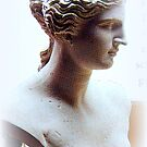 Venus Bust by ©The Creative  Minds