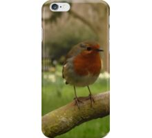 Not just for Christmas cards iPhone Case/Skin