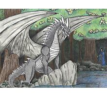 Hidden Dragon Photographic Print