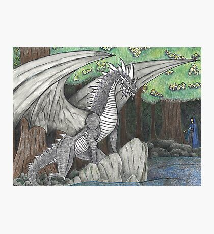 Hidden Dragon Photographic Print