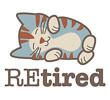 Retired Tired Sleeping Kitten Photographic Print