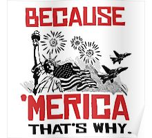 Because 'Merica That's why Poster