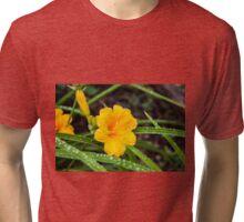 Nature's Gems 3 Tri-blend T-Shirt
