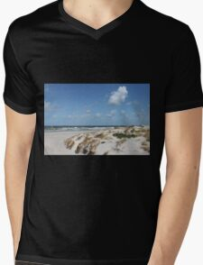 Beautiful Beach Mens V-Neck T-Shirt