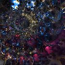 Fractal Chaos by Hugh Fathers
