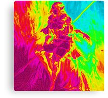 Rainbow Elf Warrior Canvas Print