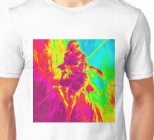 Rainbow Elf Warrior Unisex T-Shirt