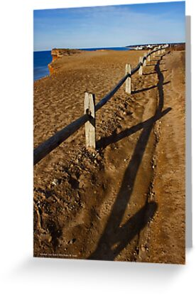 Fence - Shadmoor State Park | Montauk, New York by © Sophie W. Smith