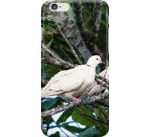 A pigeon pair..........!    iPhone Case/Skin