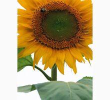 Beautiful Sunflowers 2 Unisex T-Shirt