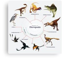Theropoda: The Cladogram Canvas Print