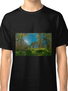 Looking out from Lachlan Swamp Classic T-Shirt