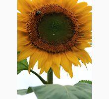 Beautiful Sunflowers 3 Unisex T-Shirt