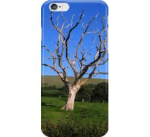 After-life iPhone Case/Skin