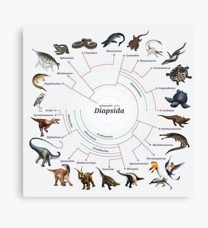 Diapsida: The Cladogram Canvas Print