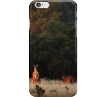 Wild Roos iPhone Case/Skin