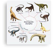 Sauropodomorpha: The Cladogram Canvas Print