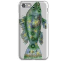 Star fish iPhone Case/Skin